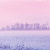 Mele sulla neve pubblicato su Quistello in cerca d'autore (Prima edizione)